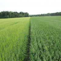 Information till alla lantbruksproducenter