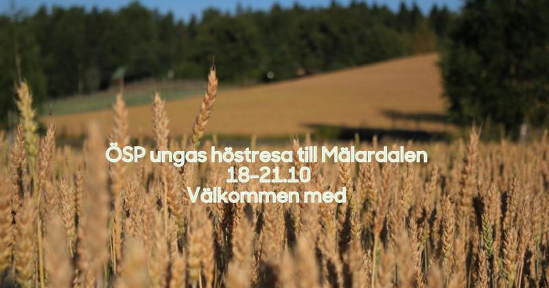 Unga bönder höstresa till Mälardalen i Sverige