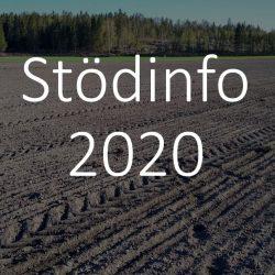 Stödinfo 2020