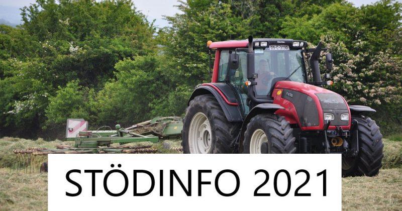 Stödinfo 2021